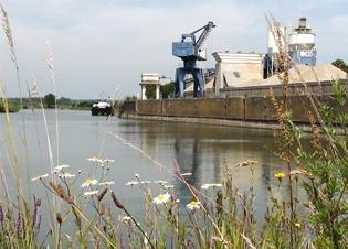 Afbeelding Waterbodems in de IJssel