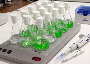 Afbeelding De toxiciteit van olie-achtige stoffen op algen