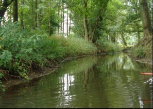 Afbeelding Watersysteemanalyse voor beken