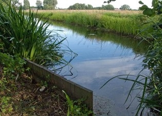 Afbeelding Een gebiedsbrede analyse van toxische druk in Delfland