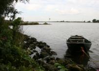 Afbeelding Ecologische effecten in de Nieuwe Merwede