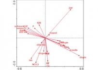 Afbeelding Inzicht in de macrofaunagemeenschappen ten behoeve van een meetnet optimalisatie