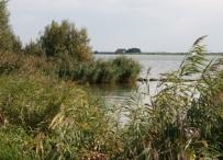 Afbeelding Verontreinigde waterbodems en de Waterwet