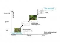 Afbeelding Protocol monitoring beekherstel waterschappen