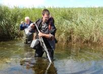 Afbeelding Herstel van de waterplanten op Goeree-Overflakkee