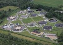 Afbeelding Biologische effectmonitoring bij vergaande zuivering van RWZI-effluent